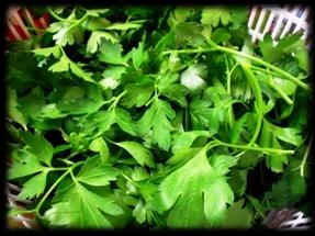 Merluzzo in salsa verde